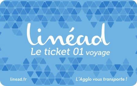 Ticket 01 voyage